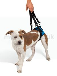 KVP Lift 'Em Up Rear Mobility Harness
